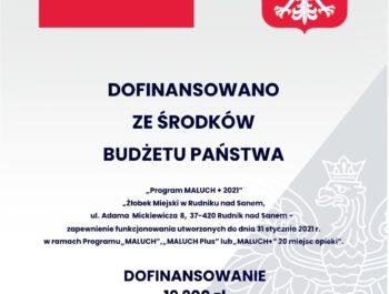 ",,Program MALUCH+ 2021 r. """